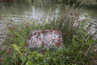 Hybris-BASIA IRLAND_Geleenbeek Pond Book_2015