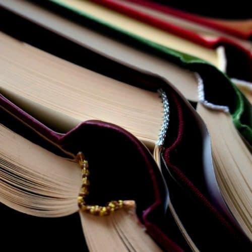 La lexicografía y sus contornos disciplinares