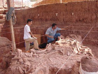 patrimonio arqueológico-Arqueología-poblamiento-temprano-continente-americano