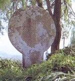 prehistoria-Estela-discoidea-de-Coaña