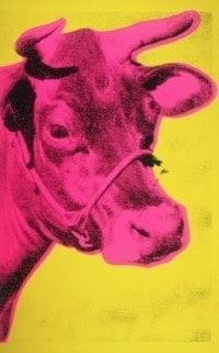 Vaca, 1966