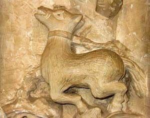 simbología animal