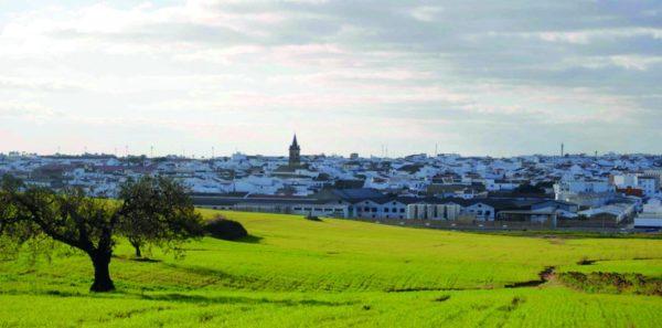 Condado de Huelva -Patrimonio Industrial Vitivinícola
