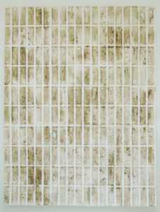 Sen título1 2020 frotage terra sobre papel 200x150cm