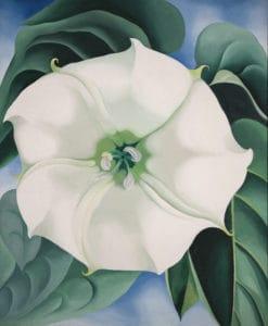 Georgia O'Keeffe -Jimson weed/white flower no 1